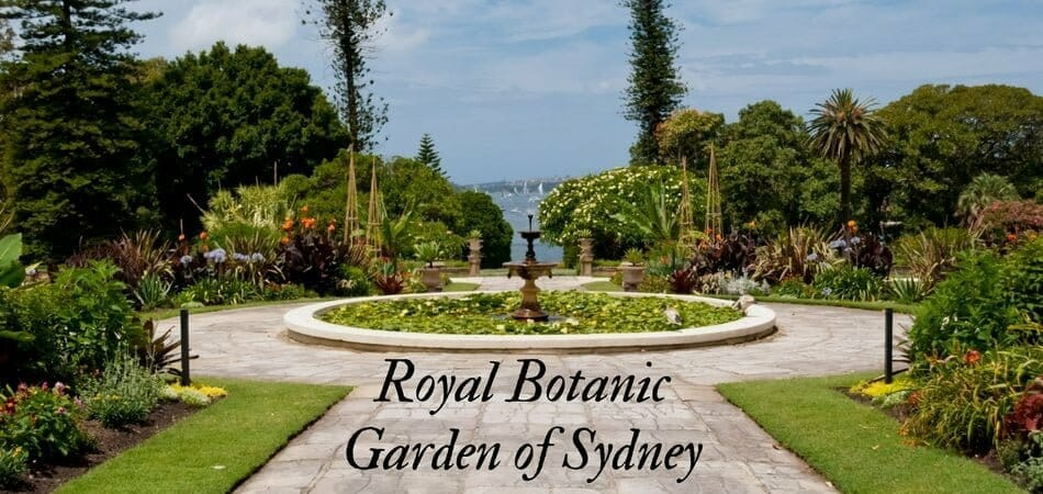 Royal-Botanic-Garden-of-Sydney≈