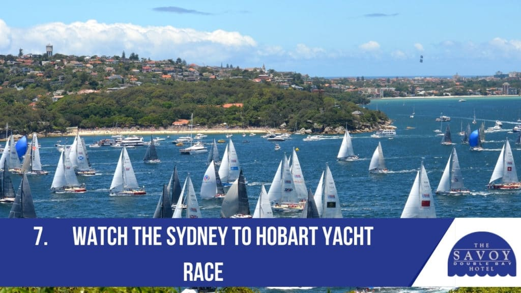 Watch the Sydney to Hobart Yacht Race
