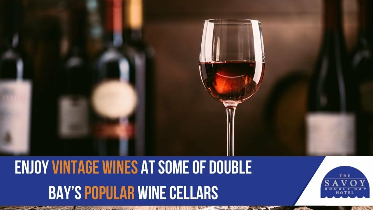 enjoy vintage wines at some of Double Bay's popular wine cellars