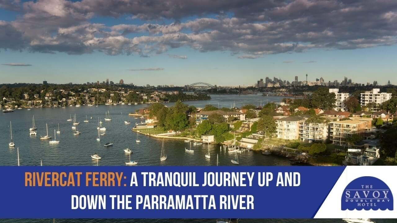 Rivercat Ferry- A Tranquil Journey Up and Down the Parramatta River